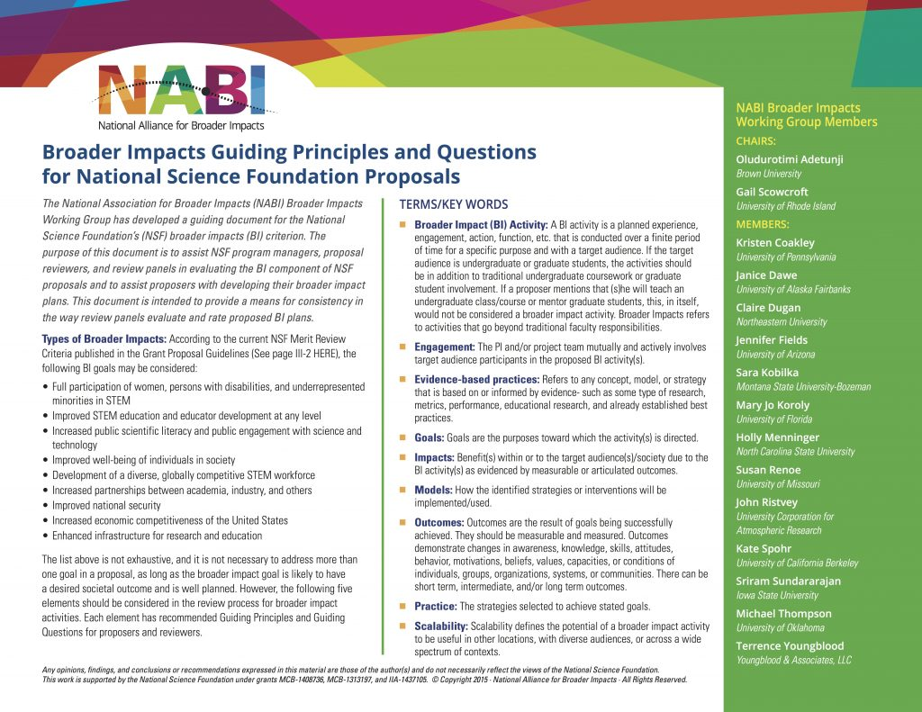 nabi_guiding_principles